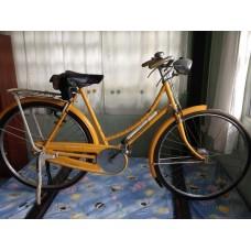 จักรยานราเล่ย์50ปี